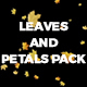 Leaves and Petals Pack - VideoHive Item for Sale