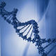 The Wonder of DNA - AudioJungle Item for Sale