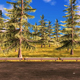 Forest Road - VideoHive Item for Sale