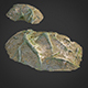 3d scanned nature forest roots 011 - 3DOcean Item for Sale