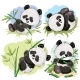 Playful Panda Bear Baby with Bamboo Cartoon Vector - GraphicRiver Item for Sale