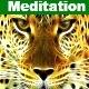 The Meditation Music