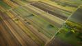 Crop field in autumn. On top. - PhotoDune Item for Sale