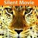 Ragtime Silent Movie Pack