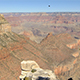 Grand Canyon Landscape with Birds - VideoHive Item for Sale