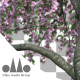 3D Animated Photorealistic Sakura Tree Ver.3 - Pink & Green - VideoHive Item for Sale
