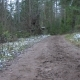 Frozen Dirty Road in the Forest - VideoHive Item for Sale