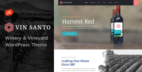 Vin Santo - Winery & Vineyard Theme