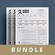 Infographic Resume/Cv Bundle Volume 2 - GraphicRiver Item for Sale