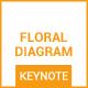 Floral Diagram - Keynote - GraphicRiver Item for Sale