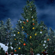 Path Way To Christmas Tree - VideoHive Item for Sale