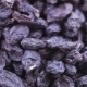 Pile of Blue Raisins - VideoHive Item for Sale