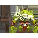 Arch Demon - 3DOcean Item for Sale