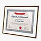 Certificates - GraphicRiver Item for Sale