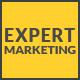 Expert - Blog Wordpress Theme for Marketer - ThemeForest Item for Sale