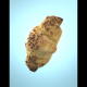 Photorealistic Delicious Chocolate Croissant - 3DOcean Item for Sale