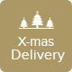 X-mas Delivery - Christmas Delivery Offer Email Template PSD - GraphicRiver Item for Sale