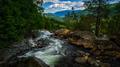 Rapids flowing through trees in Norway. - PhotoDune Item for Sale