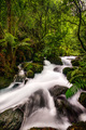 Rapids at Blue Pools, Pure New Zealand - PhotoDune Item for Sale