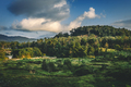 Landscape of tropical island . Horizontal image. - PhotoDune Item for Sale