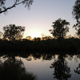 Australian Outback in the Evening Hours