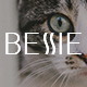 Bessie - Responsive Email + StampReady, MailChimp & CampaignMonitor compatible files