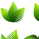 Growing Leafs Symbols Icons - GraphicRiver Item for Sale