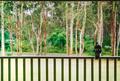 Magpie on Veranda - PhotoDune Item for Sale