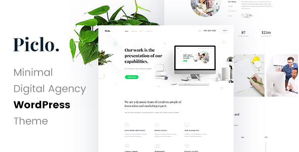 Piclo - Digital Agency WordPress Theme