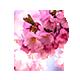 Press | Premium Blogging Tumblr Theme - ThemeForest Item for Sale
