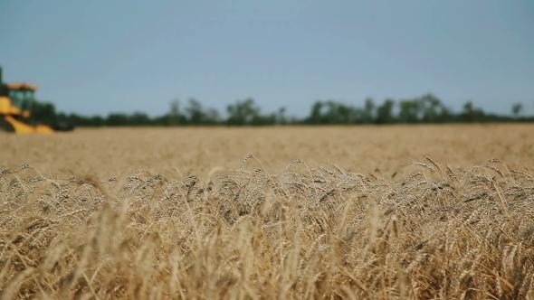 Combine Harvester, Accelerated Survey