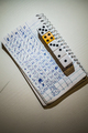 Yum dice game result with Crazy high score. - PhotoDune Item for Sale