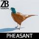 Lowpoly Pheasant 001 - 3DOcean Item for Sale