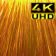 Golden Rays - VideoHive Item for Sale