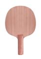 Tennis racket. Isolated - PhotoDune Item for Sale