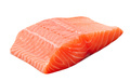 fresh uncooked red fish fillet - PhotoDune Item for Sale