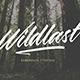 Wildlast Handbrush Typeface - GraphicRiver Item for Sale