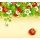 Strawberry Frame - GraphicRiver Item for Sale