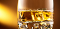 Whisky on the rocks. Glass of whiskey with ice over amber backgr - PhotoDune Item for Sale