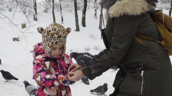 Mom and Daughter Are Feeding Pigeons in a Winter Park