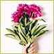 Camelia | A Floral Studio Florist WordPress Theme - ThemeForest Item for Sale