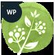 Avicenna | Alternative Folk Medicine Doctor WordPress Theme - ThemeForest Item for Sale