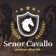 Senor Cavallo - Horse Riding Club, Stables & Equestrian Sport WordPress Theme - ThemeForest Item for Sale