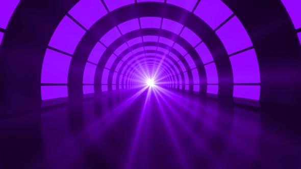 Purple Tunnel Loop