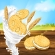 Vector Promotion Banner for Milky Cookies Brand - GraphicRiver Item for Sale