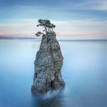 Portofino park. Pine tree rock cliff. Long exposure. Liguria, It