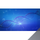 Blue DNA Helix Molecule Rotating in 3D Space - 4K - VideoHive Item for Sale