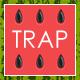 Sport Workout Trap