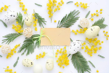 Easter floral background, various eggs and mimosa flowers, view