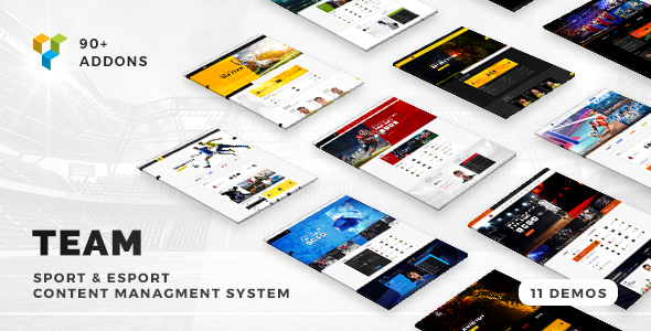 Team - Soccer, Football, Hockey, Basketball Club & eSport Gaming WordPress Theme